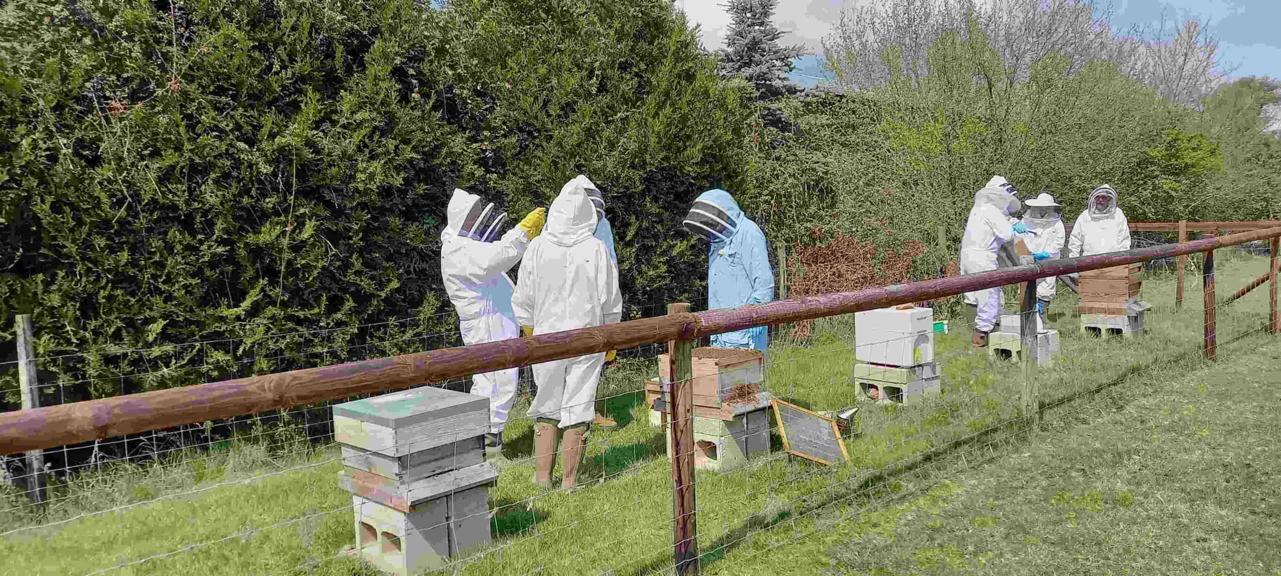 Shipston Beekeepers Introduction to Beekeeping course 2021